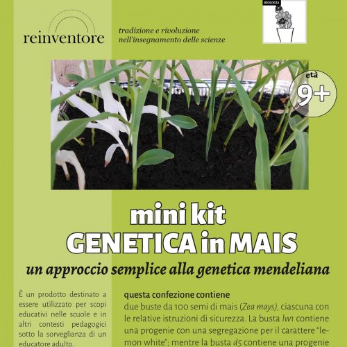 Mini-kit Genetica in Mais